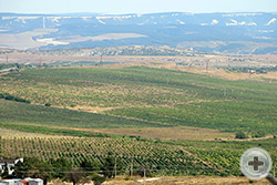 Долина р.Альмы, где состоялось одно из самых крупных сражений Крымской войны
